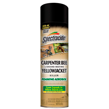 Spectracide Foaming Aerosol from Ground Bees: photo