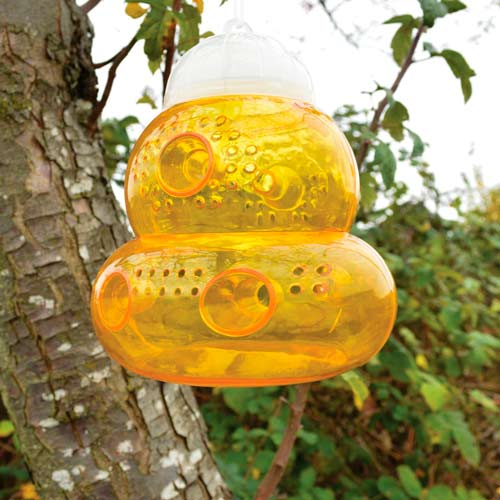 The Best Selling Reusable Bee Trap