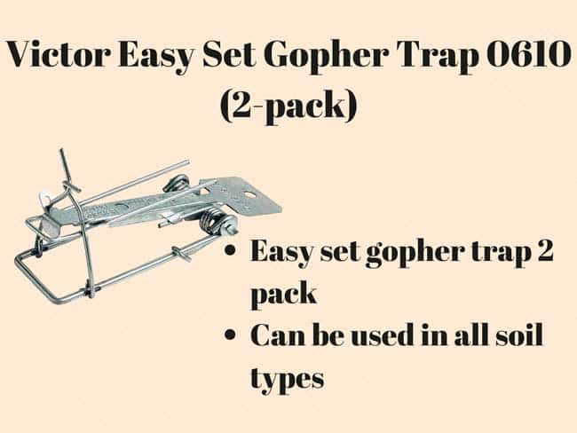Victor Easy Set Gopher Trap 0610