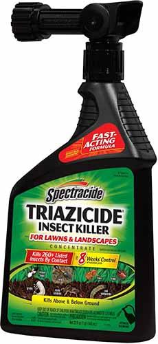 Spectracide Ant Killer