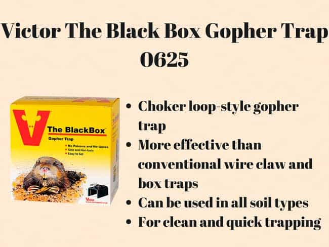 Victor The Black Box Gopher Trap 0625