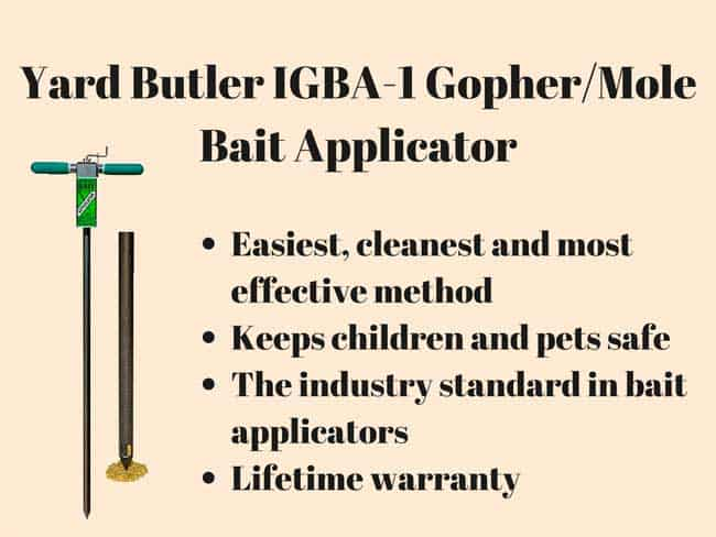 poison bait applicator