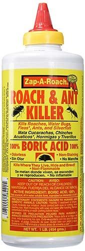 Does boric acid kill adult wasps