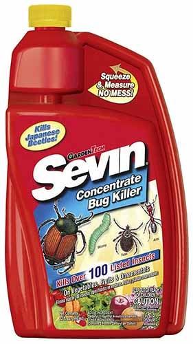 Concentrate Bug Killer