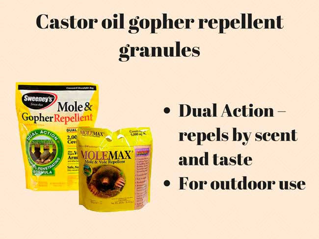 Castor oil gopher repellent granules