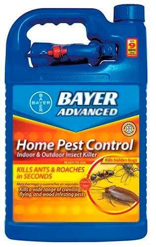 Инсектицид против скорпионов: фото