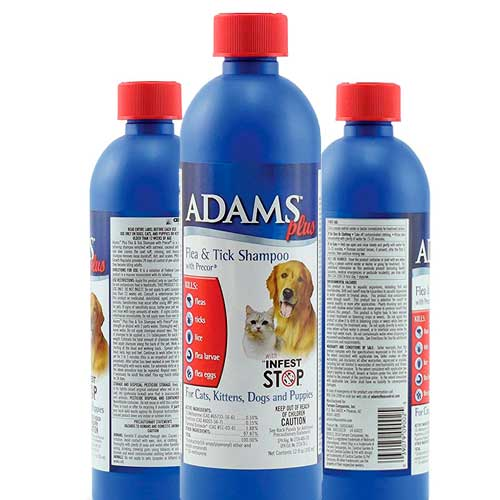 Flea Shampoo for Cats - Adams Plus: photo
