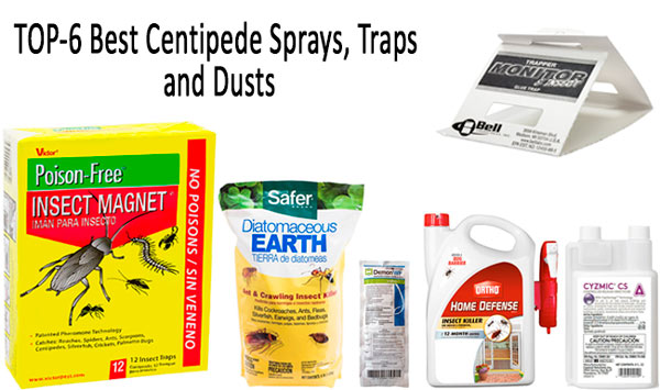 TOP centipedes sprays, traps, dusts: photo