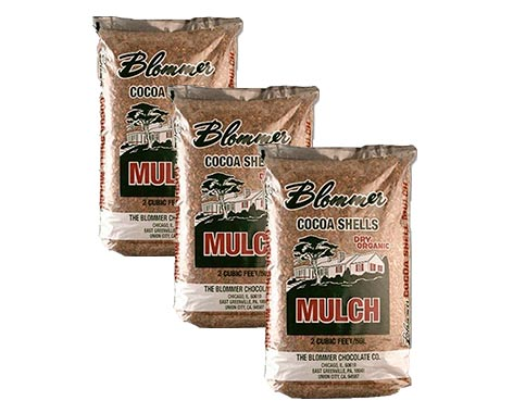 Blommer Cocoa Shell Mulch: photo