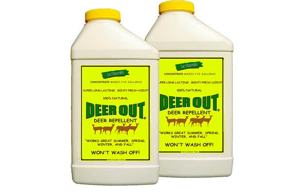 Concentrate Deer Repellent: photo