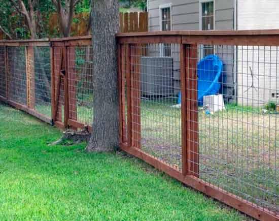 Dog Fence Wire above Ground: photo