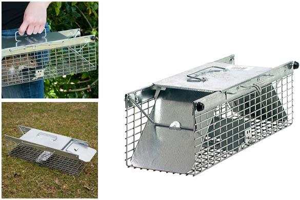 Havahart 2-Door Live Squirrel Trap: photo
