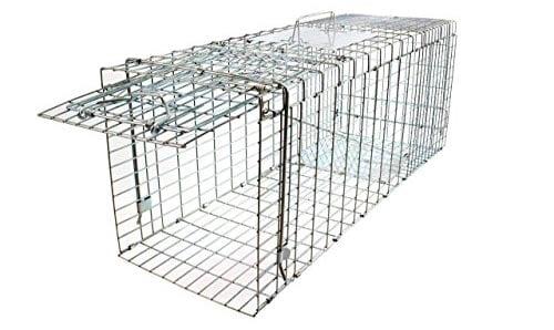 Coyote & Fox Humane Trap Cage: photo