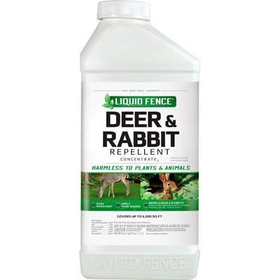 liquid fence rabbit repellent: photo