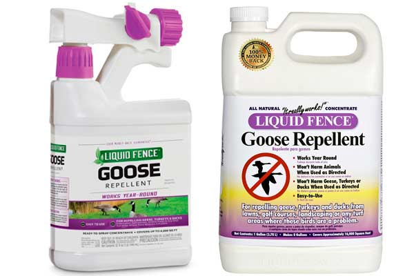 Liquid Fence Goose Repellent: photo