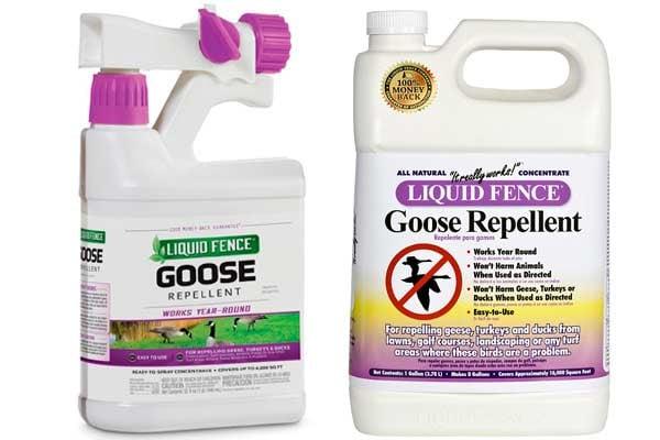 Liquid Fence Goose Repellent: photo