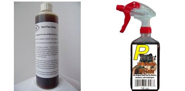 Possum Urine Repellents: photo