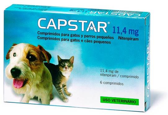 Tabletas anti pulgas para perros y gatos: foto