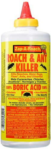 Natural Carpenter Ant Control Products