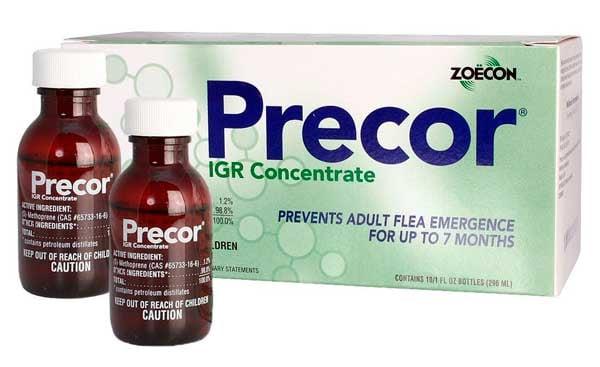 Control de pulgas IGR Regulador: foto
