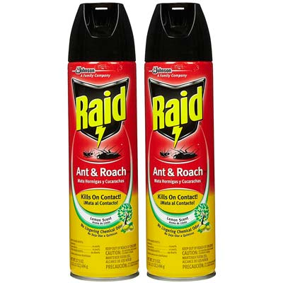 Raid Ant & Roach Insecticide: photo