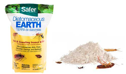 Diatomaceous Earth - Safer