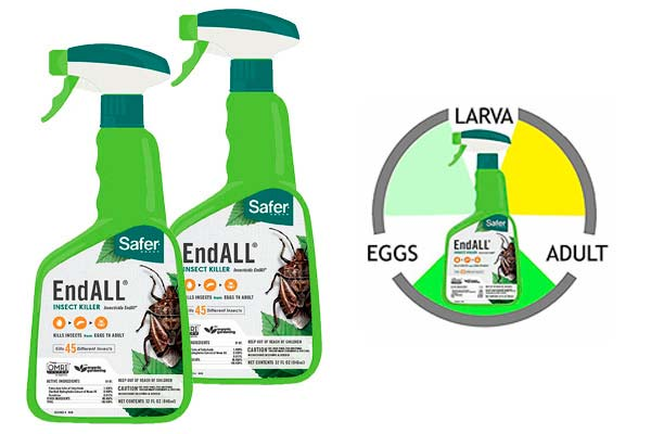 Safer Brand End All Insect Killer: photo