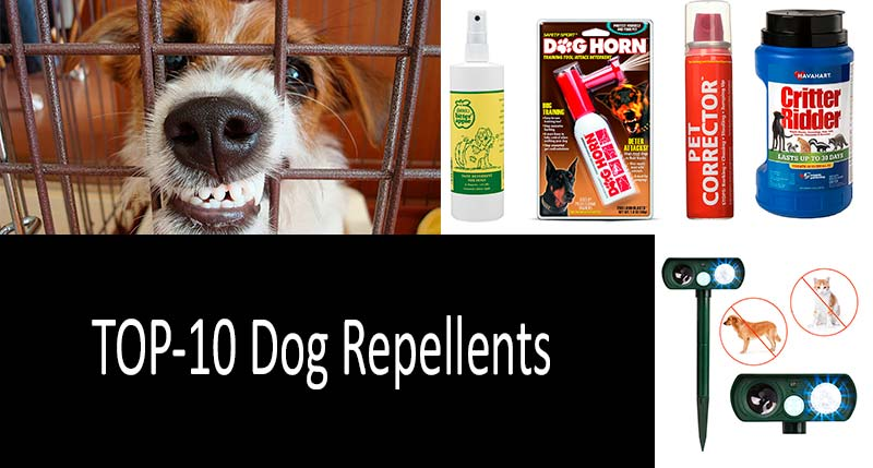 Best Dog Repellents: photo