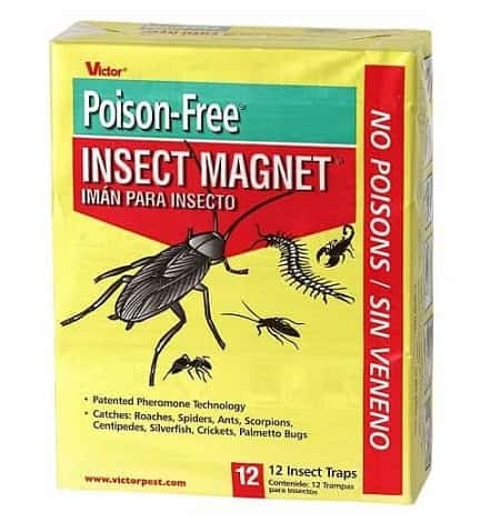 Victor M256 Poison-Free Insect Magnet Traps