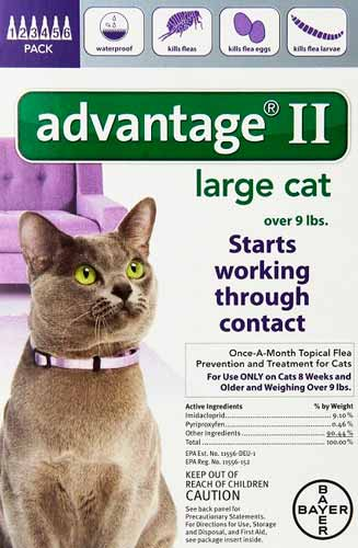 Advantage Ii For Dogs Vs Cats