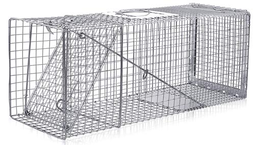 cage trap for beavers: photo