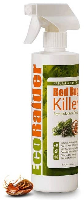 natural bed bug killer spray
