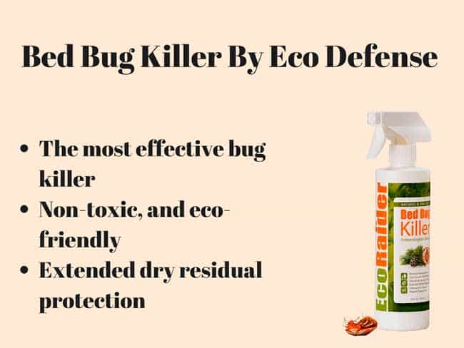 top-7 bed bug sprays: fast blood-sucking insect killers