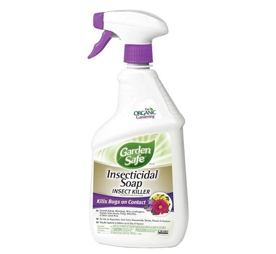 Jabón Insecticida Exterminados de Insectos Garden Safe