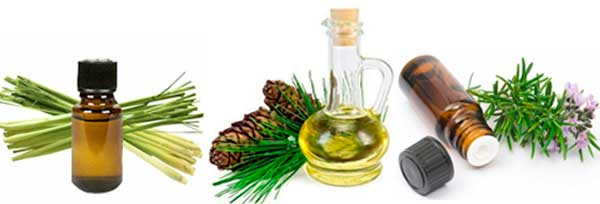 A mix of essential oils: photo