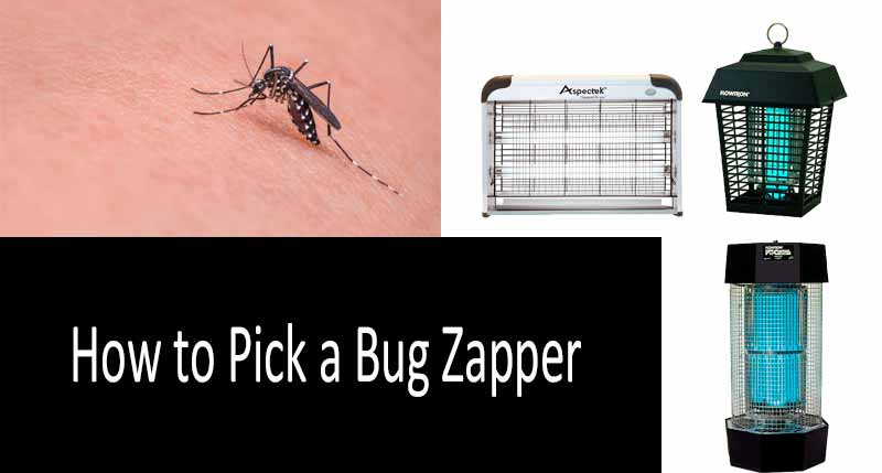 How to pick a bug zapper: review of the best indoor and outdoor units