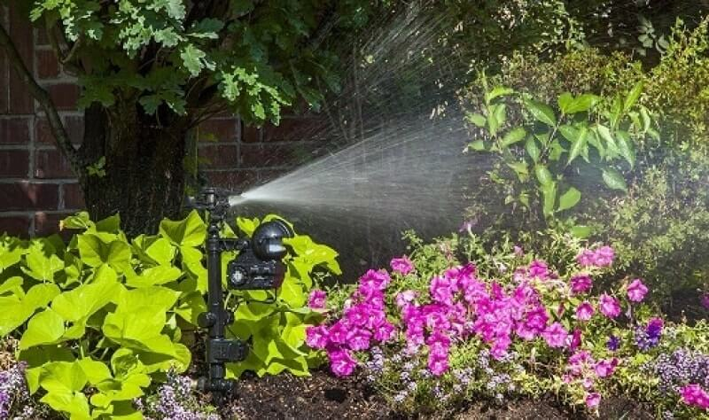 Top 3 of The Best Motion Activated Sprinklers