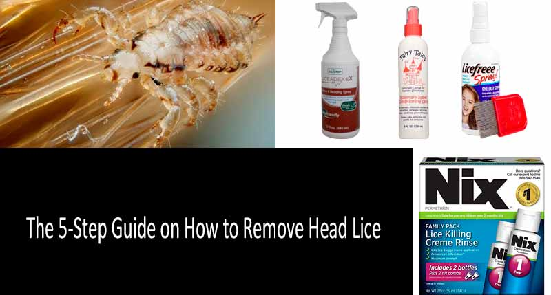 Best Lice Combs and Sprays For Lice Removal - Buyer's Guide 2019