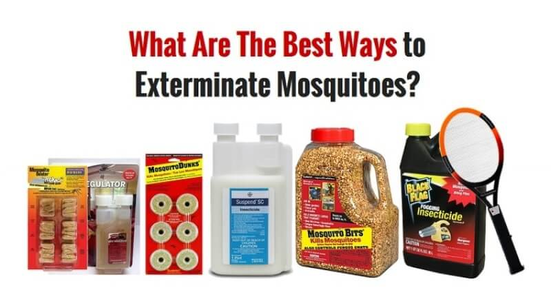 7 Best Ways to Get Rid of Mosquitoes in Your House and Yard