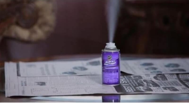 7 Mejores Anti Pulgas: Aerosoles, trampas, Fumigadores (bombas)