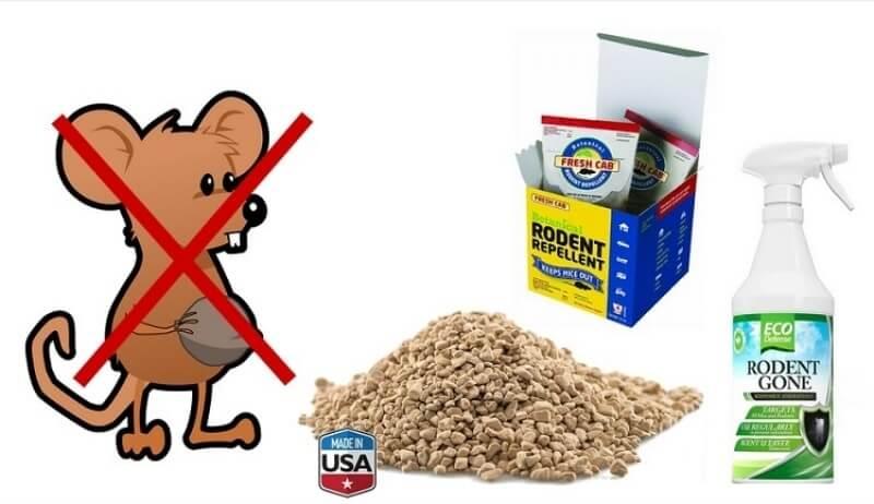Los 3 mejores repelentes de ratones y ratas recomendados - El mejor veneno para ratones ...