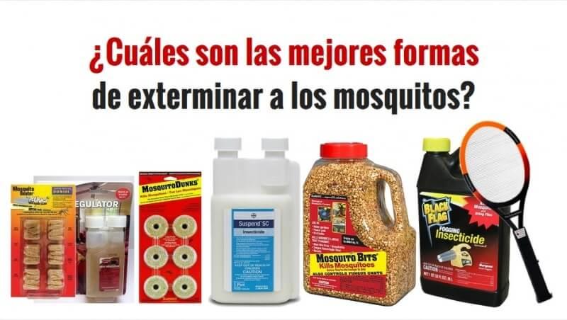 Las 7 Mejores Formas de Deshacerte de los Mosquitos en tu Casa y tu Jardín