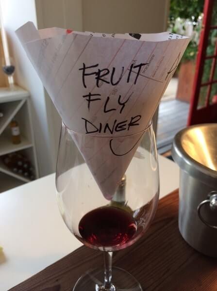 C mo librarse de las moscas de fruta las mejores trampas - Como sacar las moscas de la casa ...