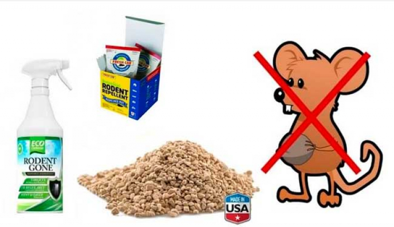 Best Rat and Mouse Repellents Review