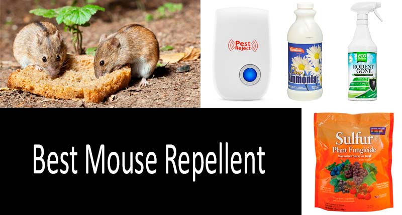 Top 5 Mouse Repellents Review