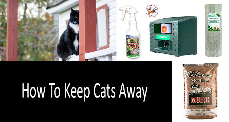 How To Keep Cats Off Patio Furniture.How To Keep Cats Away Top 9 Products And Devices