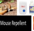 Best Mouse Repellent Reviews