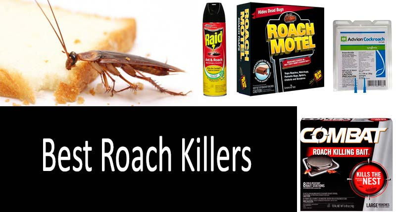 12 Best Roach Killers: Die, Horrible Creatures!