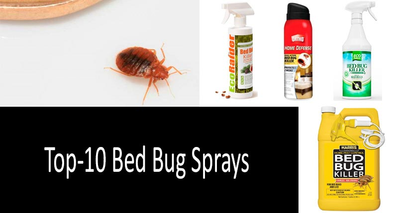 Best Bed Bug Killer Sprays: Photo