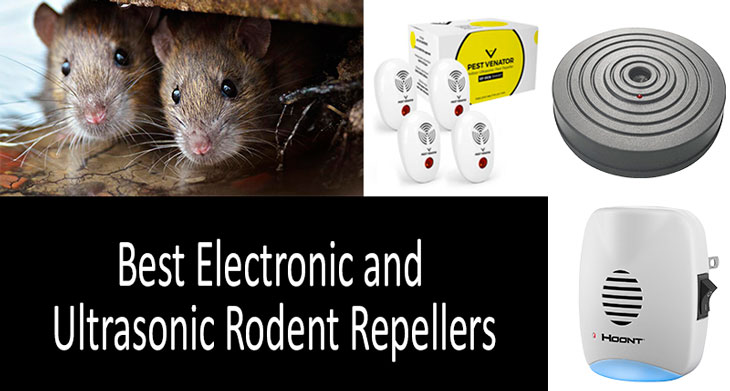 best rodent repellers: photo